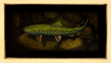 Brook Trout I