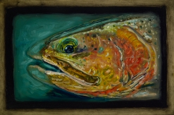"""Cutthroat Trout I,Lamar Valley, Yellowstone Park,6"""" x 8.75""""Oils on Plaster Panel"""