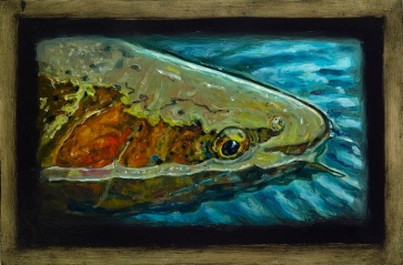 """Cutthroat Trout II,Lamar Valley, Yellowstone Park,6"""" x 8.75""""Oils on Plaster Panel"""