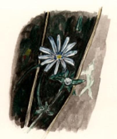 Esopus Flower
