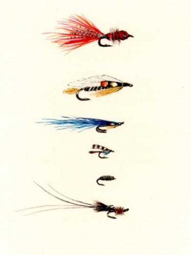 Icelandic Flies