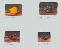 Sketchbooks Q 11 - Fruit - Agramonte, Cuba