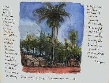 Sketchbooks Q 8 - Pepe's Farm - Agramonte, Cuba