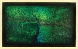 Biological Regionalism: Scajaquada Creek, Juniper Boulevard/Headwaters, Lancaster, New York, USA