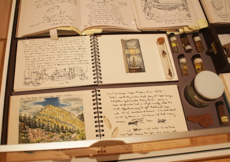 B.Table with travel journals, insects and water samples from around the world.