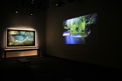 Installation view of a tunnel video as creek flows under Buffalo