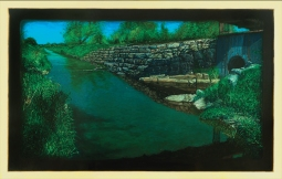 Biological Regionalism: Scajaquada Creek, North Creek South Creek Park, Cheektowaga, New York, USA