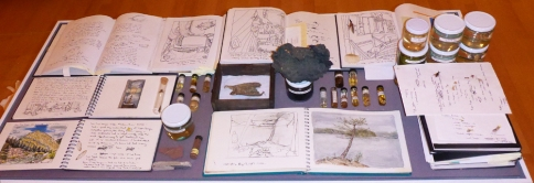 A Table with travel journals, insects and water samples from around the world.