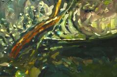 Water Sample Detail 1