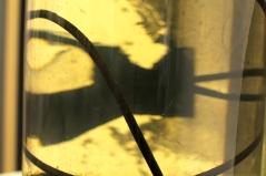 Water Sample Detail 3