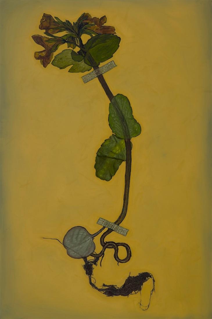 Alberto Rey 3-20-202034864 extinct plant 150