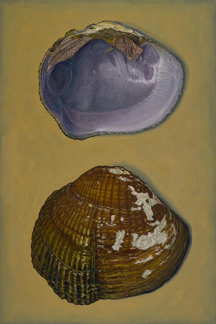 Alberto Rey 3-20-202034891 mussels 150