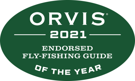 2021_Endorsed_FFGuide_year