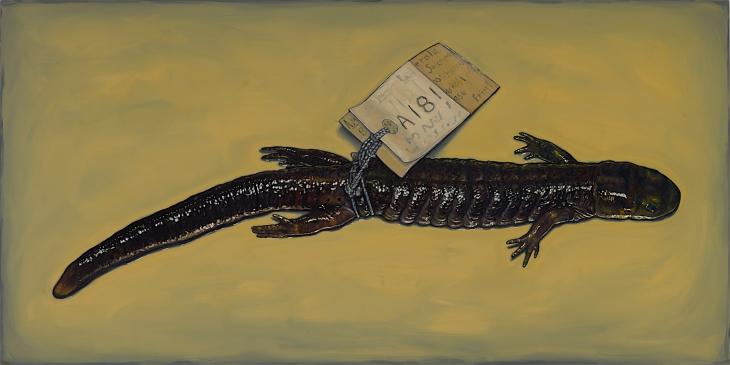 Alberto Rey 3-20-202034895 salamander 150